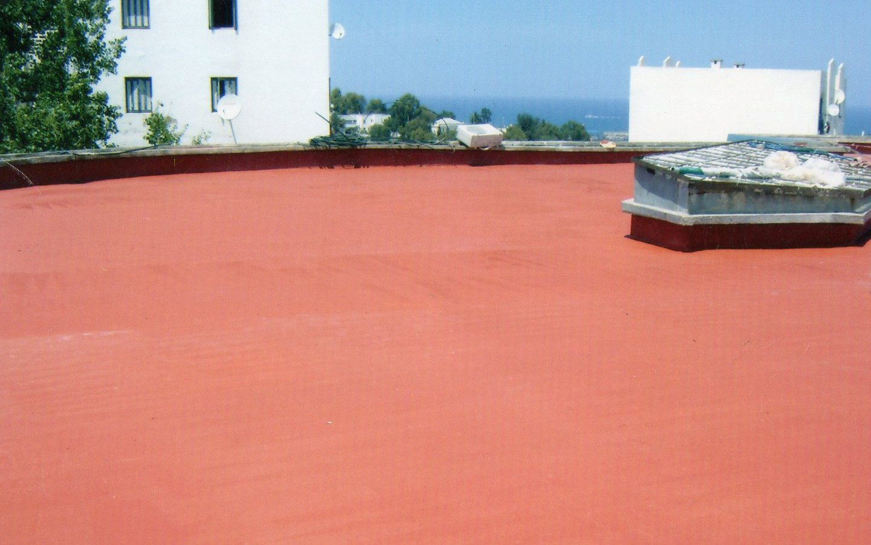 Etancheite toiture toit terrasse distributeur algerie for Peinture satinee algerie prix